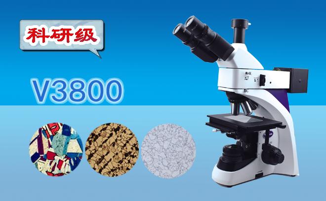 三目金相显微镜V3800